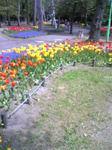 image/2010-05-19T11:06:151