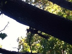 image/2012-10-27T13:38:04-1.jpg